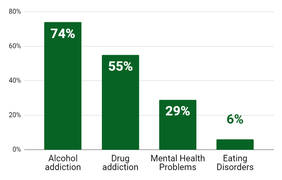 The most common addictions among Male Celebrities In Recovery